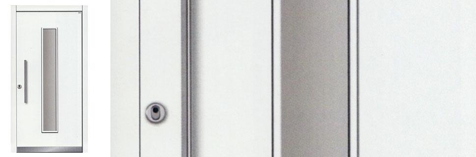 Holzhaustüre Modell 1110